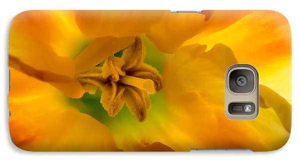 Butterfly Daffodil Springtime Galaxy S7 Case