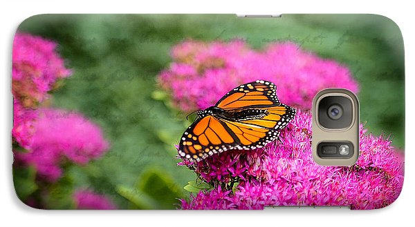 Galaxy Case featuring the photograph Butterfly In Bloom by Mary Timman
