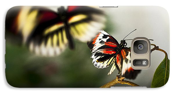 Galaxy Case featuring the photograph Butterfly In Flight by Bradley R Youngberg