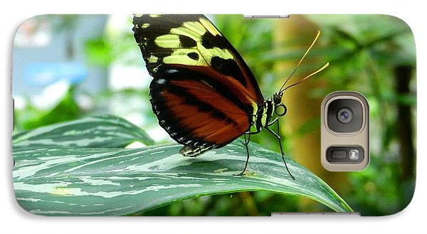 Galaxy Case featuring the photograph Butterfly In Profile by Karen Molenaar Terrell