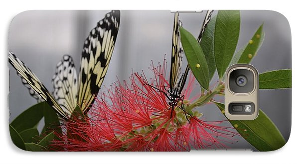 Galaxy Case featuring the photograph Butterfly Love by Carla Carson