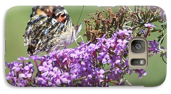 Galaxy Case featuring the photograph Painted Lady Butterfly by Eunice Miller