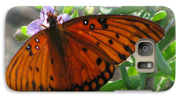 Galaxy Case featuring the photograph Butterfly On The Beach by Jimmie Bartlett