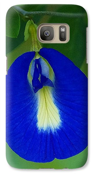 Galaxy Case featuring the photograph Butterfly Pea by Blair Wainman