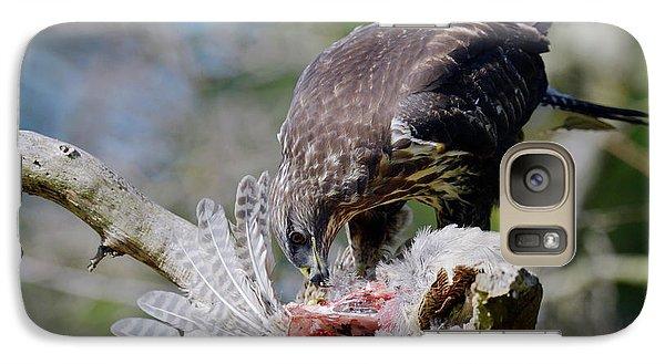 Buzzard Galaxy S7 Case - Buzzard Preying On A Bird Carcass by Dr P. Marazzi