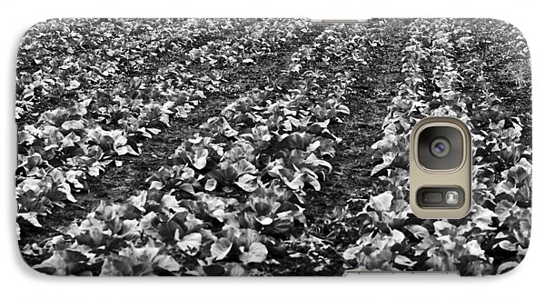 Galaxy S7 Case featuring the photograph Cabbage Farming by Ricky L Jones