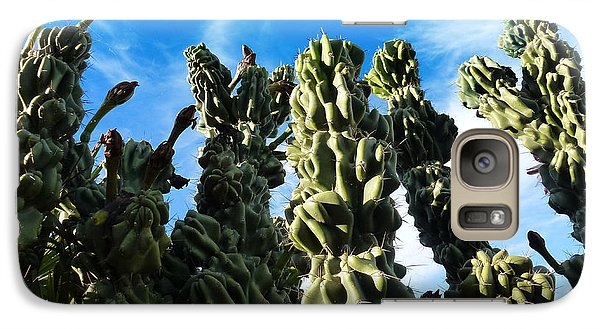 Galaxy Case featuring the photograph Cactus 1 by Mariusz Kula