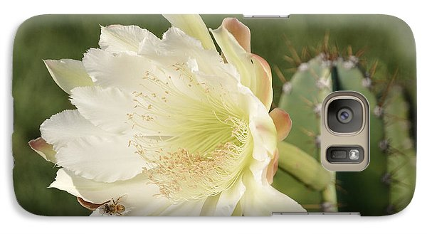 Cactus Flower And Bee Galaxy S7 Case