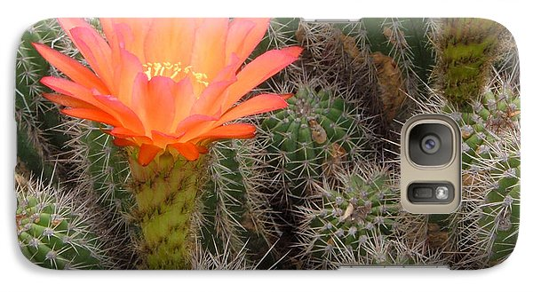 Galaxy Case featuring the photograph Cactus Flower by Cheryl Del Toro