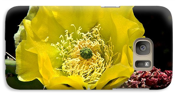 Galaxy Case featuring the photograph Cactus Flower by Sherry Davis