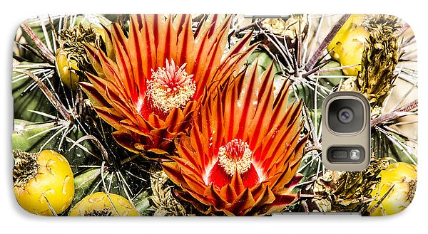Galaxy Case featuring the digital art Cactus Flowers And Fruit by Photographic Art by Russel Ray Photos