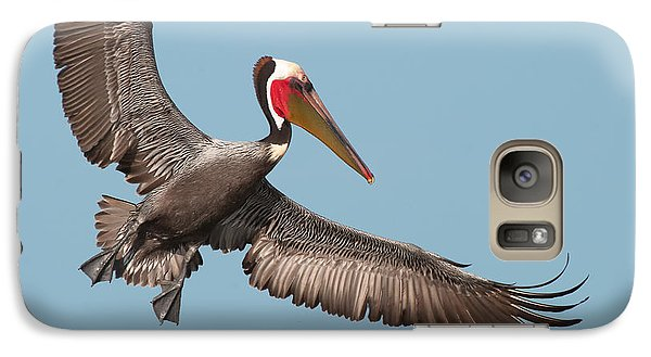 Galaxy Case featuring the photograph California Brown Pelican With Stretched Wings by Ram Vasudev