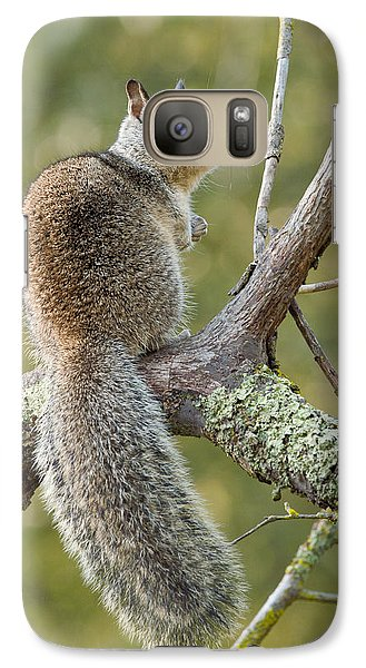 Galaxy Case featuring the photograph California Ground Squirrel by Doug Herr