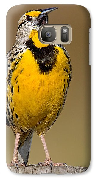 Galaxy Case featuring the photograph Calling Eastern Meadowlark by Jerry Fornarotto