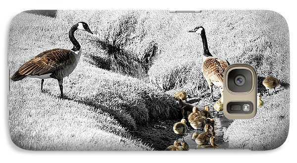 Canada Geese Family Galaxy Case by Elena Elisseeva