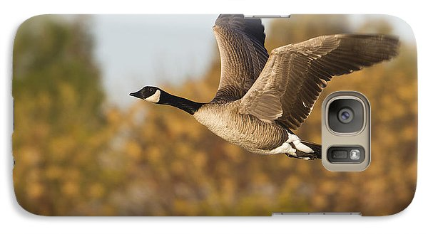 Galaxy Case featuring the photograph Canada Goose In The Skies  by Bryan Keil