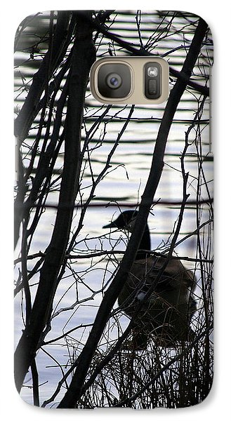 Galaxy Case featuring the photograph Canada Goose by Paula Tohline Calhoun