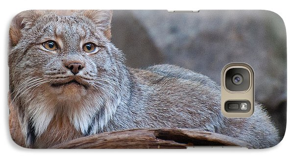 Galaxy Case featuring the photograph Canada Lynx by Bianca Nadeau