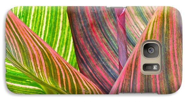Galaxy Case featuring the photograph Canna Tropicana Color by Eve Spring