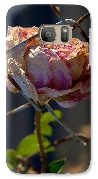 Galaxy Case featuring the photograph Can't Fence Me In - Faded Rose Art Print by Jane Eleanor Nicholas
