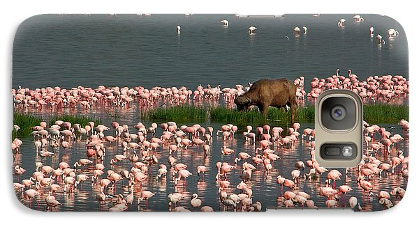 Cape Buffalo And Lesser Flamingos Galaxy S7 Case by Panoramic Images
