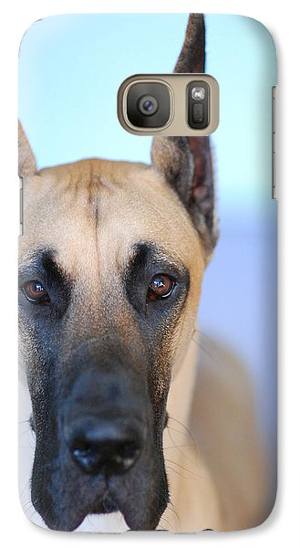 Galaxy Case featuring the photograph Cappy by Lisa Phillips
