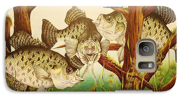 Galaxy Case featuring the drawing Captivating Crappies by Bruce Bley