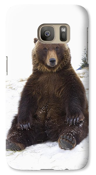 Captive Grizzly During Winter Sits Galaxy S7 Case by Doug Lindstrand