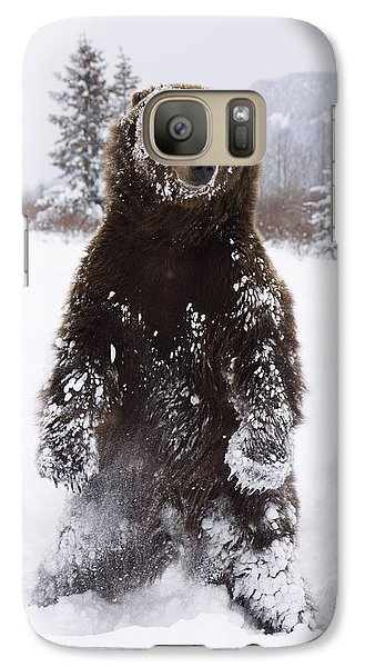 Captive Grizzly Stands On Hind Feet Galaxy S7 Case by Doug Lindstrand