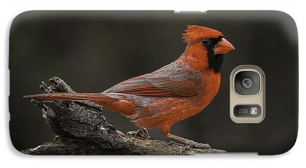 Cardinal 2011-1 Galaxy S7 Case