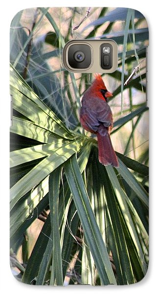 Galaxy Case featuring the photograph Cardinal In Palmetto Tree by Jeanne Kay Juhos