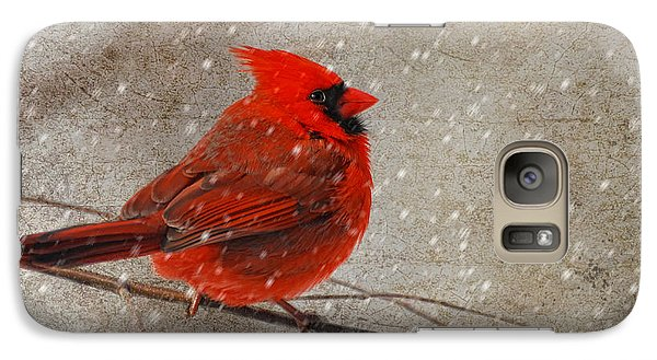 Cardinal In Snow Galaxy S7 Case by Lois Bryan