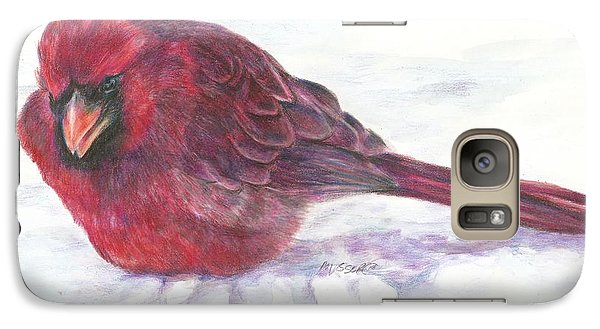 Galaxy Case featuring the drawing Cardinal Study by Meagan  Visser