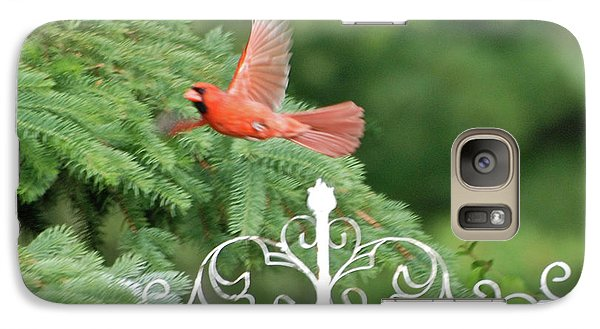 Galaxy Case featuring the photograph Cardinal Time To Soar by Thomas Woolworth