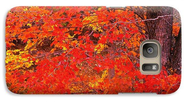 Galaxy Case featuring the photograph Carolina Autumn by Marion Johnson