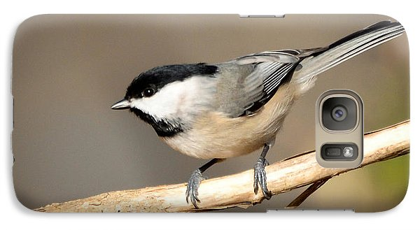 Galaxy Case featuring the photograph Carolina Chickadee  by Kerri Farley