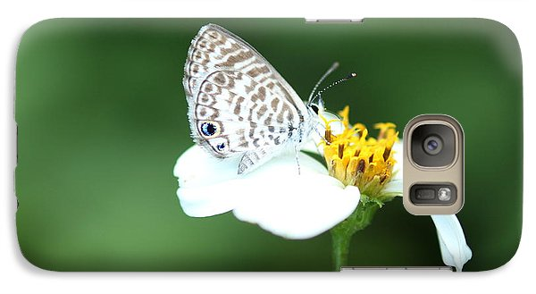 Galaxy Case featuring the photograph Cassius Blue On Wildflower by Greg Allore