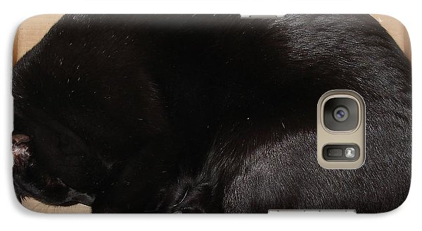 Galaxy Case featuring the photograph Cat In The Box by Kerri Mortenson
