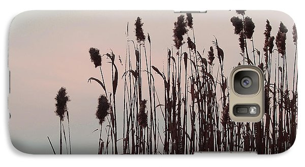 Galaxy Case featuring the photograph Cat Tails At Sunset by Margie Avellino