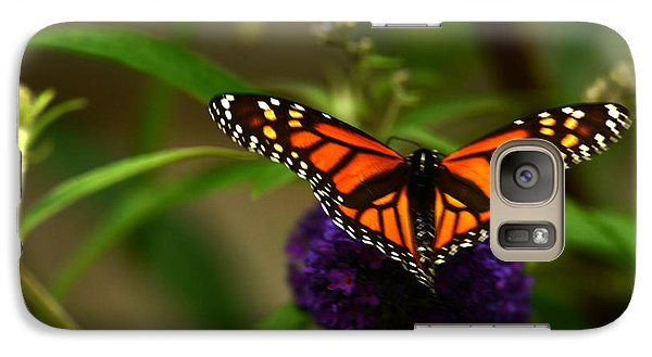 Galaxy Case featuring the photograph Catch Me If You Can by Wanda Brandon