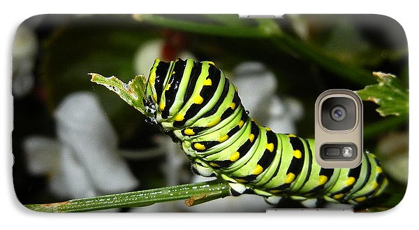 Galaxy Case featuring the photograph Caterpillar Camouflage by Bill Swartwout