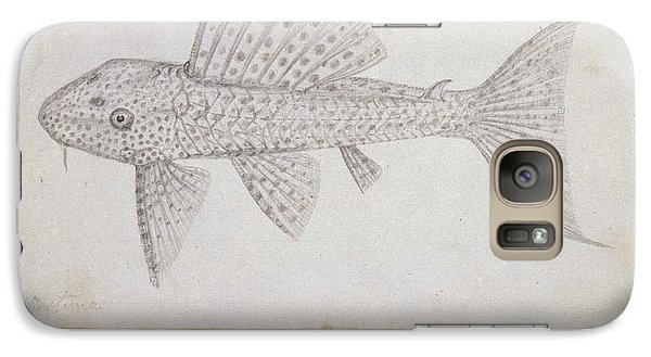 Catfish Galaxy S7 Case - Catfish by Natural History Museum, London
