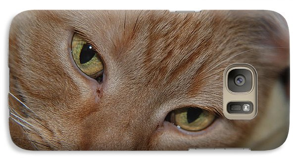 Galaxy Case featuring the photograph Cat's Eyes by Mark McReynolds