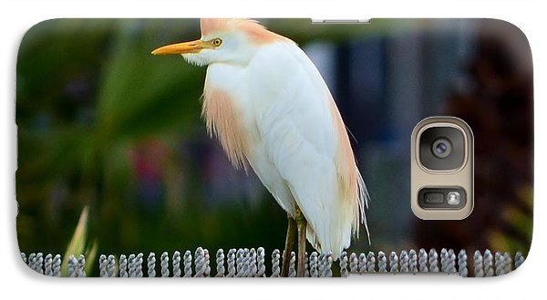 Galaxy Case featuring the photograph Cattle Egret Breeding Plumage by Debra Martz