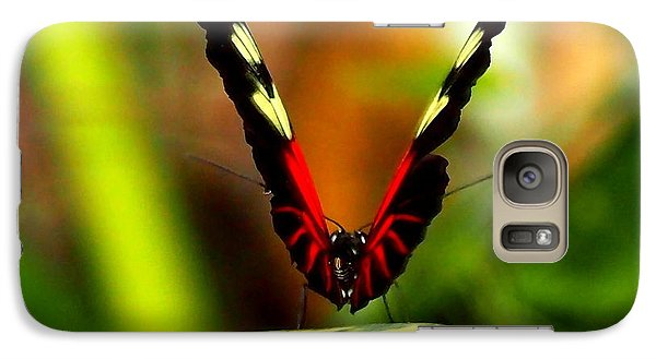 Galaxy Case featuring the photograph Cattleheart Butterfly  by Amy McDaniel