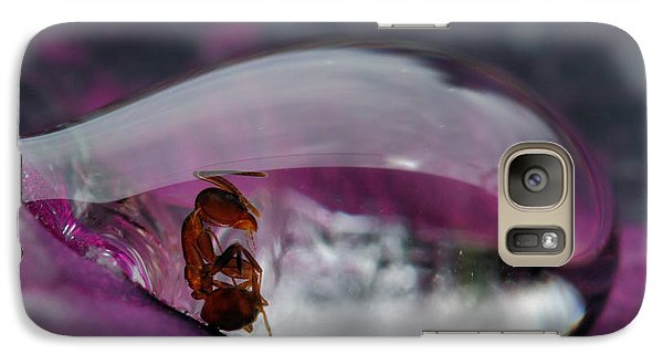 Ant Galaxy S7 Case - Caught In A Droplet by Jimmy Hoffman