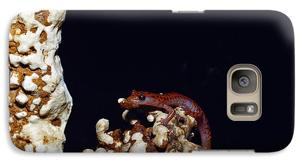 Cave Salamander Galaxy Case by Charles E. Mohr