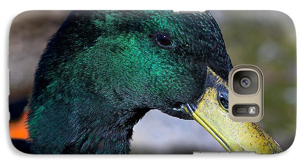 Galaxy Case featuring the photograph Cayuga Duck  by Stephen  Johnson
