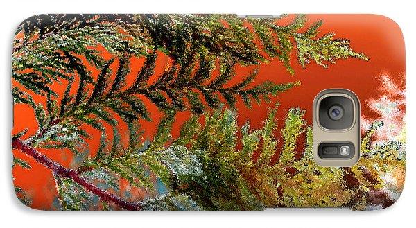 Galaxy Case featuring the photograph Cedar Canvas by Gwyn Newcombe