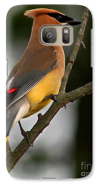Cedar Waxing Galaxy S7 Case - Cedar Wax Wing II by Roger Becker
